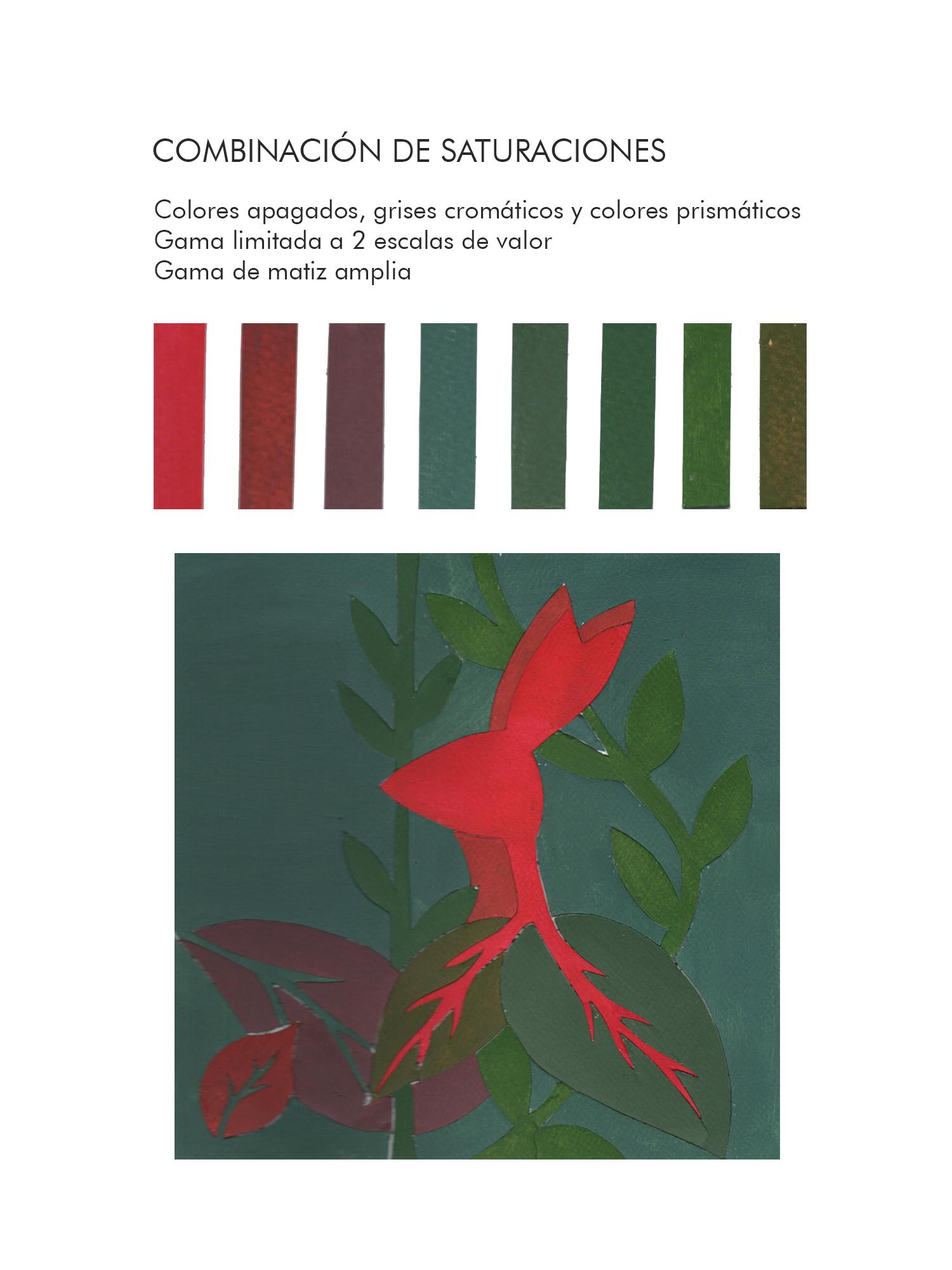 Andrea Santillán, Combinación de saturaciones
